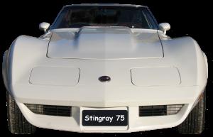 Stringray 75